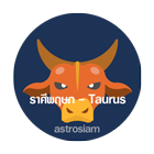 02_astrosiam_trait-by-sign_Taurus-the-bull_140x140